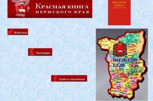 Красная книга Пермского края