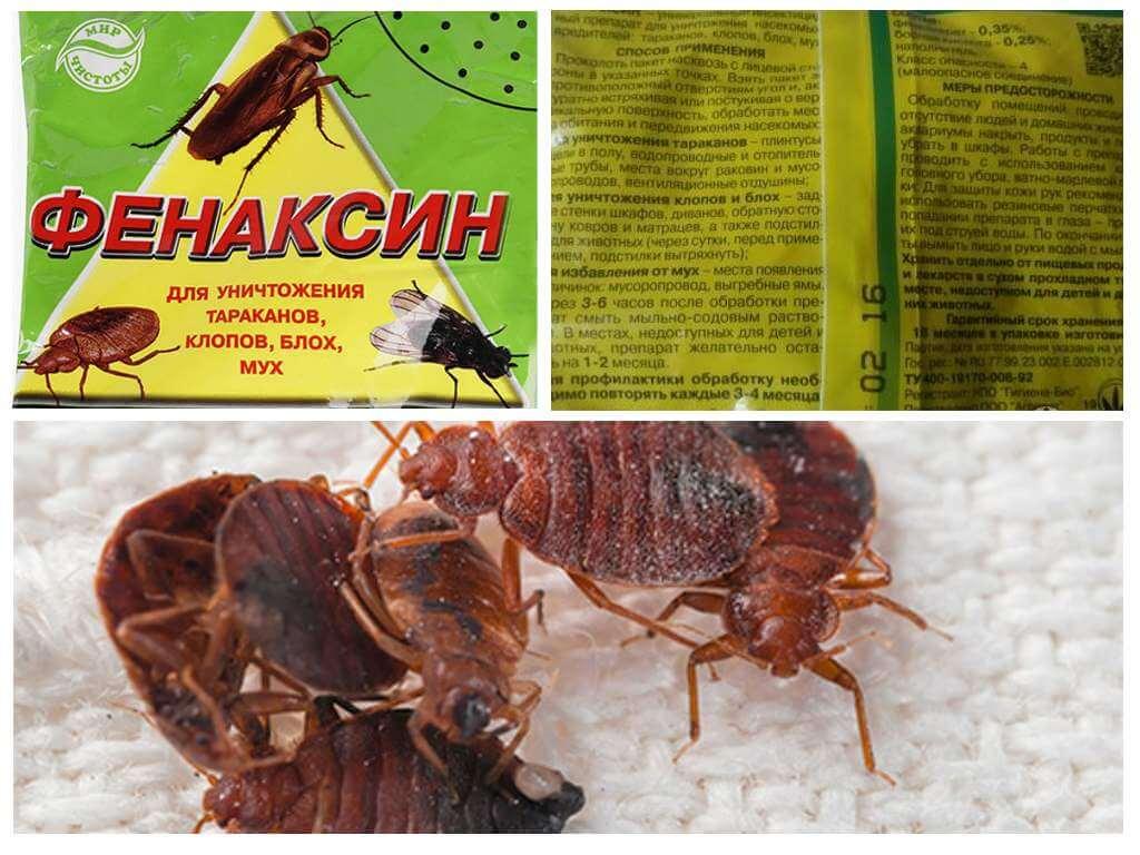 Как выбрать эффективное и качественное средство от тараканов